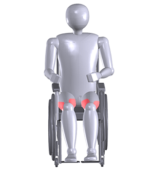 3D-Man-Abductor_Adductor